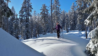 Take advantage of this winter to discover snowshoeing around Annecy